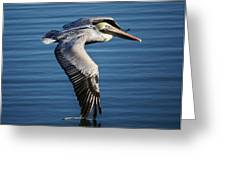 Drawing A Line In The Water Greeting Card by Paulette Thomas