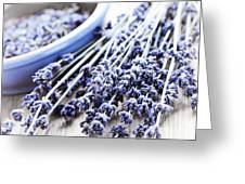 Dried Lavender Greeting Card by Elena Elisseeva