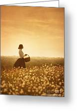 Edwardian Woman In A Meadow At Sunset Greeting Card by Lee Avison