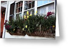 Flowers In The Window Greeting Card by John Rizzuto