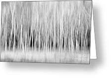 Forest Trees Abstract In Black And White Greeting Card by Natalie Kinnear