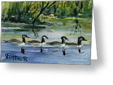 Geese In A Row Aceo Greeting Card by Virginia Potter