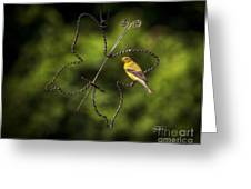 Golden Hour Greeting Card by Cris Hayes