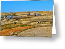 Home On The Range Greeting Card by Kelly Reber