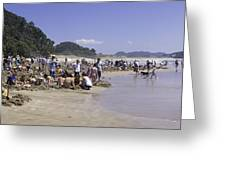 Hot Water Beach Greeting Card by Tim Mulholland