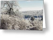 Ice Storm - 2013 Greeting Card by Jim Walker