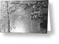 Into the Fog Greeting Card by Andrew Soundarajan