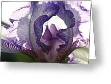 Iris Greeting Card by Monika A Leon