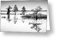 Isle of Peace - North Carolina Greeting Card by Dan Carmichael