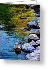 Reflections Greeting Card by Dani Stites