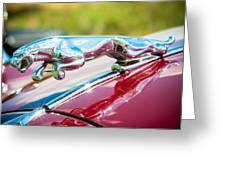 Leaping Jaguar Greeting Card by Sebastian Musial
