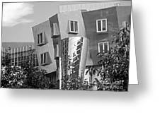 Massachusetts Institute Of Technology Stata Center Greeting Card by University Icons