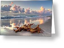 Morning Surf Greeting Card by Debra and Dave Vanderlaan