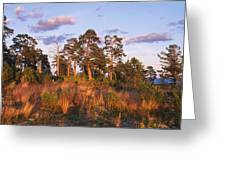 National Park VALAAMSKY Greeting Card by Anonymous