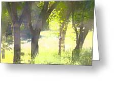 Oaks 25 Greeting Card by Pamela Cooper