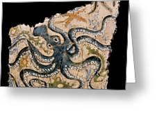 Octopus Greeting Card by Steve Bogdanoff