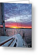 Off Into The Sunset Greeting Card by Jill Hyland