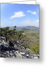 On The Edge Greeting Card by Susan Leggett