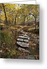 One Step At A Time Greeting Card by Iris Greenwell