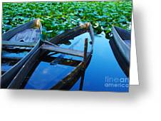 Pateira Boats Greeting Card by Carlos Caetano