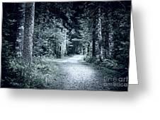Path In Dark Forest Greeting Card by Elena Elisseeva