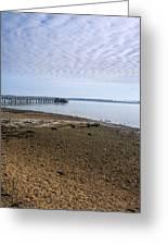 Sandy Beach Greeting Card by Svetlana Sewell