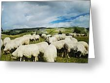 Sheep In The Field Greeting Card by Jelena Jovanovic