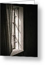 Shying From The Light Greeting Card by Odd Jeppesen