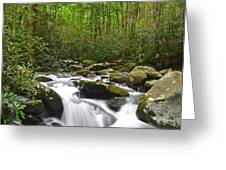 Smoky Mountain National Park Greeting Card by Frozen in Time Fine Art Photography