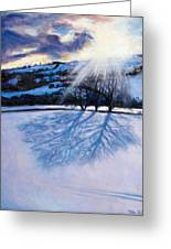 Snow Shadows Greeting Card by Tilly Willis