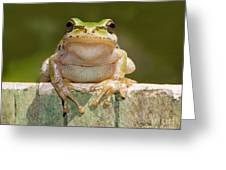 Someone Watching Over Me Greeting Card by Mimi Ditchie