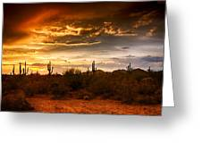Southwestern Skies  Greeting Card by Saija  Lehtonen