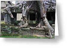 Strangler Fig Tree Roots On Preah Khan Temple Greeting Card by Sami Sarkis
