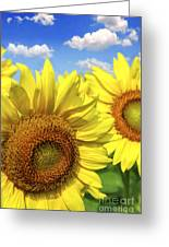 Sunflowers Greeting Card by Elena Elisseeva