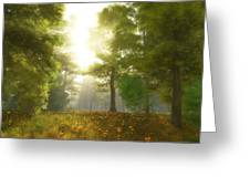 Sunlit Meadow Greeting Card by Cynthia Decker