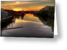 Sunrise On The Petaluma River Greeting Card by Bill Gallagher
