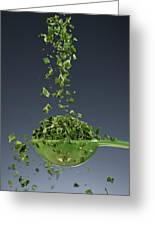 1 Tablespoon Chives Greeting Card by Steve Gadomski