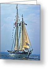 Tall Ship Harvey Gamage Greeting Card by Skip Willits