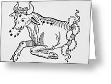 Taurus An Illustration Greeting Card by Italian School
