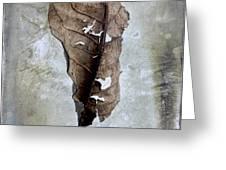 Textured leaf Greeting Card by BERNARD JAUBERT