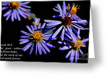 The Flower Fades Greeting Card by Thomas R Fletcher