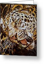 The Leopard's Hello Greeting Card by Cynthia Adams