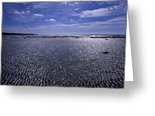 The White Sea Greeting Card by Anonymous