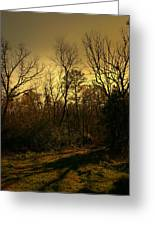 Time Of Long Shadows Greeting Card by Nina Fosdick