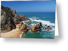 Ursa Beach Greeting Card by Carlos Caetano