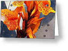 Ventura Flower Greeting Card by Ron Regalado