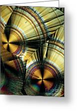 Vitamin C Crystals Greeting Card by Claude Nuridsany and Marie Perennou