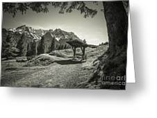 walking in the Alps - bw Greeting Card by Hannes Cmarits