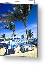 Windy Day At The Beach Greeting Card by Susan Stone