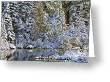 Winter Scene Greeting Card by Pat Now